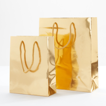 Small Gift Bag with Handles